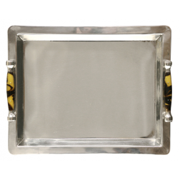 Stainless Steel Tray image