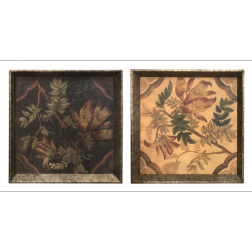 Botanical Trays image